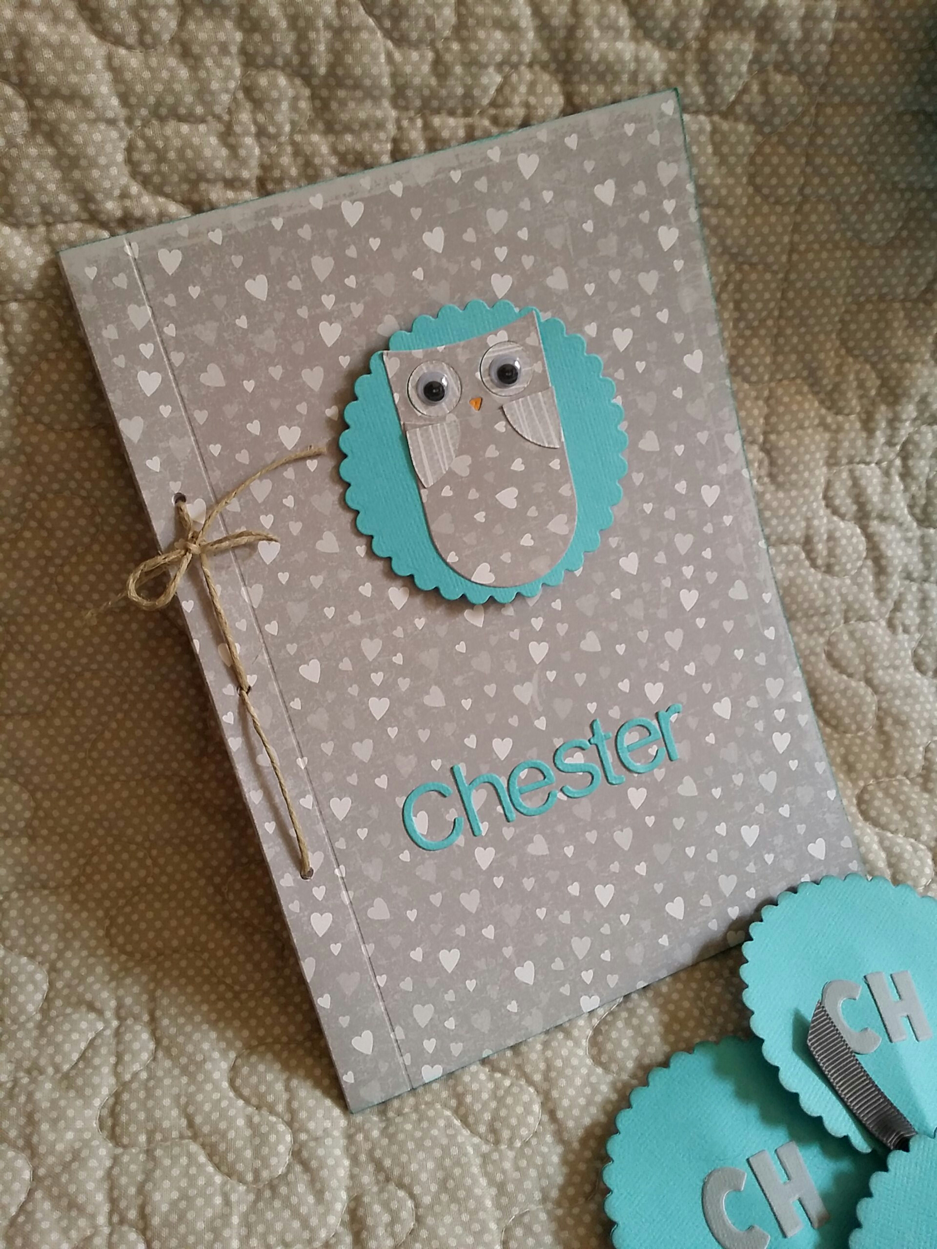 Detalles de scrapbook para baby shower